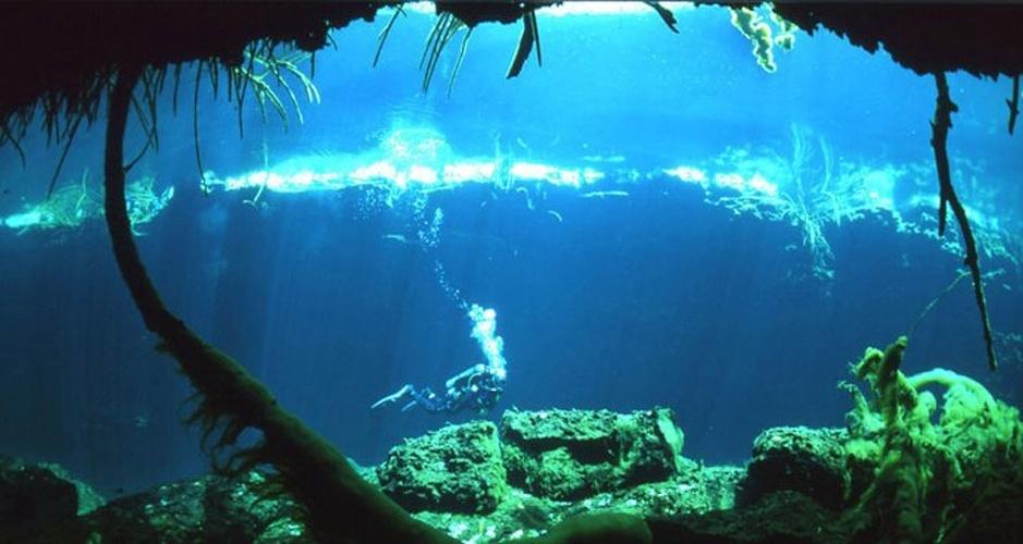 Cenote dos Ojos, México: Localizada na costa caribenha da península de Yucatán, é sinalizada para mostrar exatamente por onde o mergulhador deve ir para ficar rodeado por peixes coloridos enquanto nada em águas cristalinas