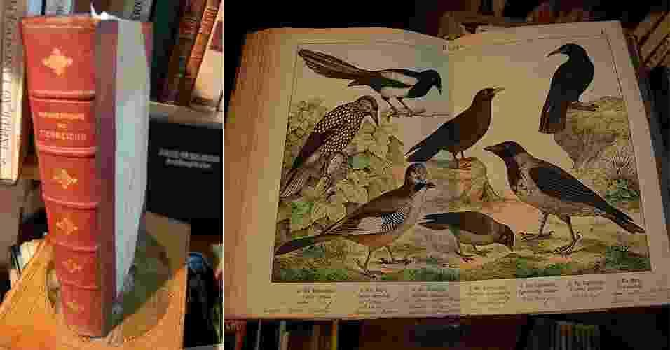 01.ago.2014 - Capa de um livro alemão sobre pássaros, de 1860, à venda por R$ 8.000 no FranSebo, na Flip 2014, em Paraty - Rodrigo Casarin/UOL
