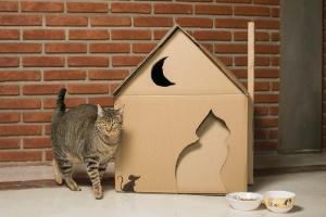 Faça uma casinha para seu gato usando caixas de papelão - Leonardo Soares/ UOL