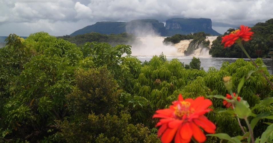 A natureza venezuelana e a lagoa Canaima ao fundo