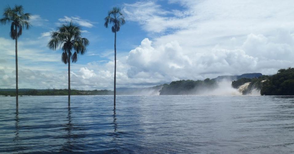 Lagoa de Canaima com suas palmeiras típicas