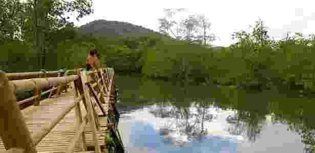 Uma grande passarela de madeira foi construída sobre os mangues do Parque Nacional Natural de Utría para permitir o acesso de turistas - Felipe Floresti/UOL