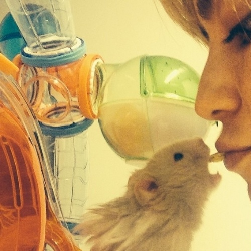 20.ago.2014 - Fernanda Vasconcellos divulgou imagem onde aparece alimentando com a própria boca um hamster