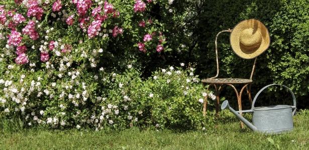 Para ter um jardim sempre belo regue, adube e pode adequadamente suas plantas - Getty Images