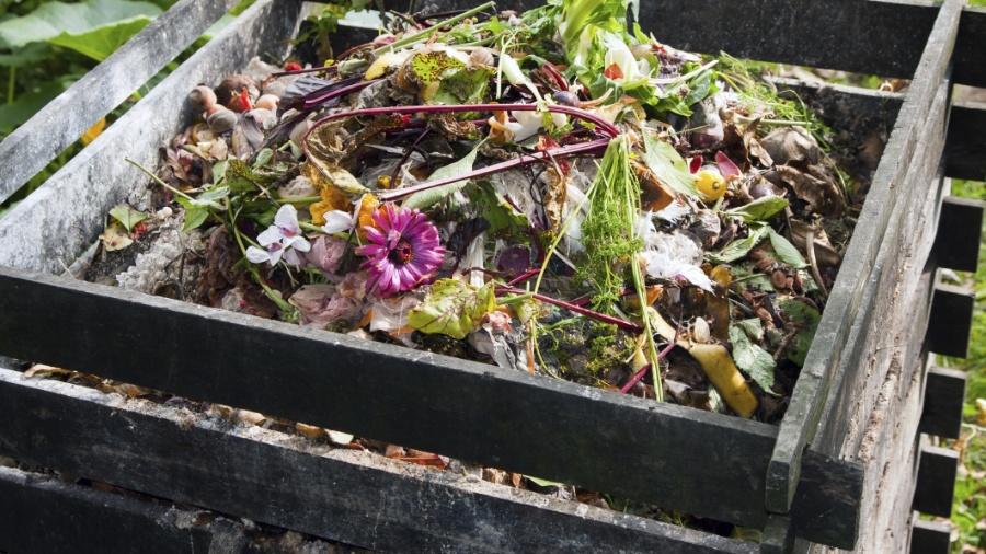Recipiente para compostagem; compostagem caseira - Getty Images