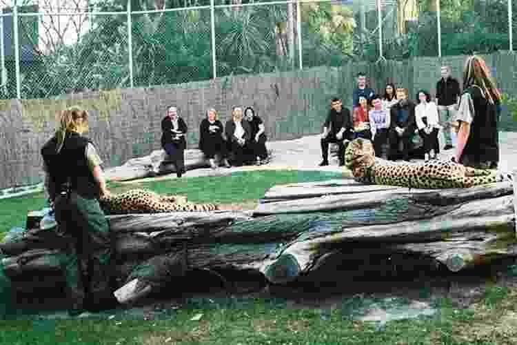 Zoológico de Wellington - Nova Zelândia - Divulgação