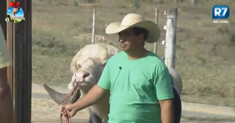 """Caseiro de """"A Fazenda 7"""" leva o búfalo para os peões conhecerem"""