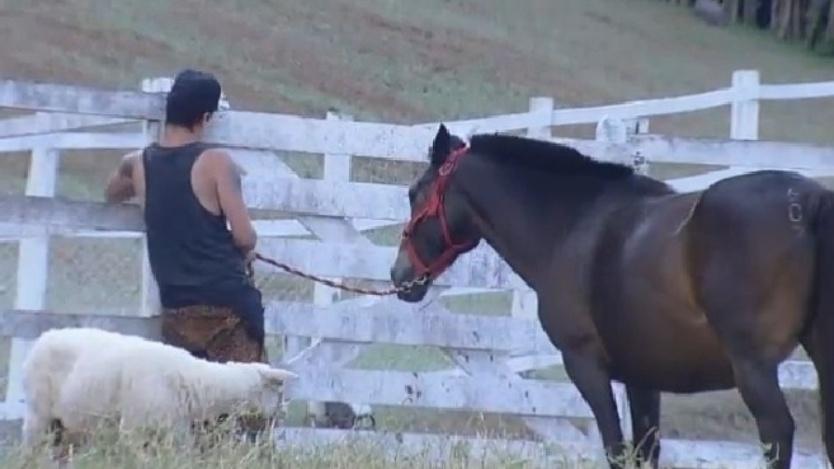 """DH Silveira conduz o cavalo em """"A Fazenda 7"""""""