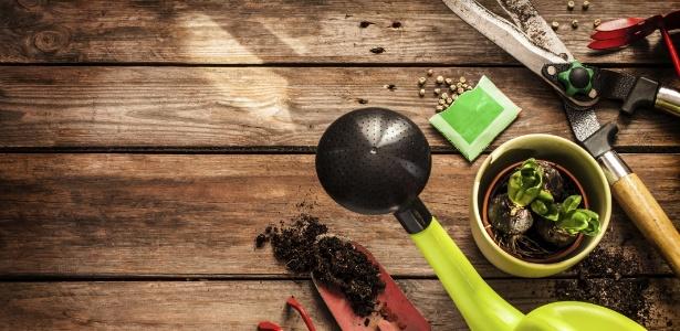 Cuide das ferramentas e pratique a jardinagem com mais conforto e eficiência - Getty Images