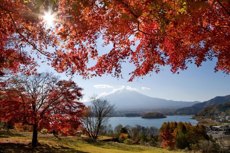 Resultado de imagem para japao no outono