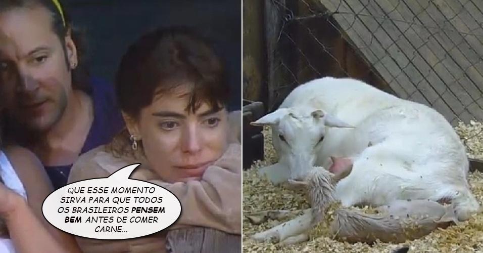 """Álbum balãozinho - Heloisa Faissol defende vegetarianismo ao assistir nascimento de cabra em """"A Fazenda 7"""""""