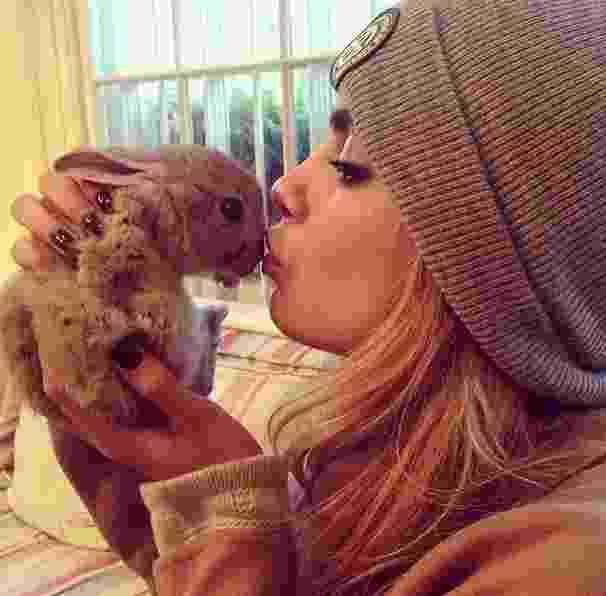 """Cara Delevingne é """"mãe"""" de uma coelhinha fofa chamada Cecil Bunny Delevingne. A paixão da modelo é tanta que ela criou uma conta no Instagram dedicada ao bichinho - Reprodução/Instagram"""