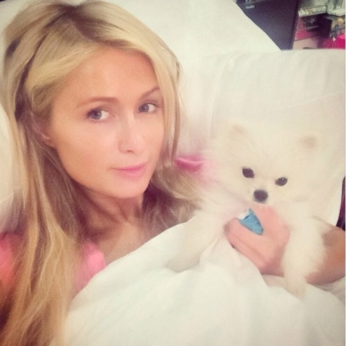 """Paris Hilton participa da campanha""""Wake Up Call"""" e publica selfie ao acordar ao lado de um de seus cachorrinhos"""