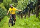Explore a Serra Gaúcha a bordo de uma bicicleta - Jonatha Junge/Divulgação