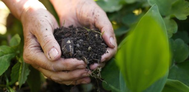 Os adubos orgânicos nutrem principalmente a terra, tornando-a melhor para o cultivo - Getty Images