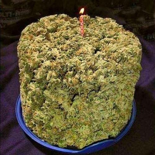Em seu aniversário de 43 anos, Snoop Dogg comemora com bolo de maconha