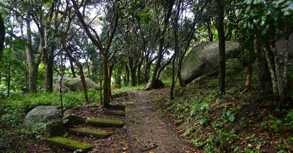 Trilha arborizada que dá acesso ao Sítio de Santo Antônio, em São Roque. Se for preciso, o visitante pode ter acesso ao local em um caminho para carros