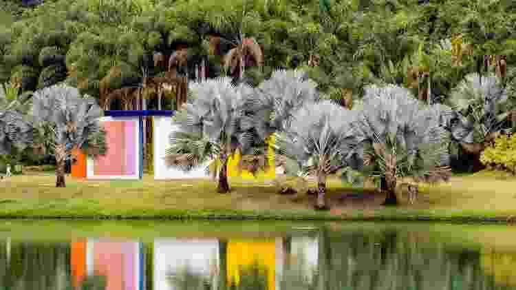 Jardim de palmeiras azuis ao lado da obra de Hélio Oiticica, em Inhotim - David Santos Jr/UOL - David Santos Jr/UOL