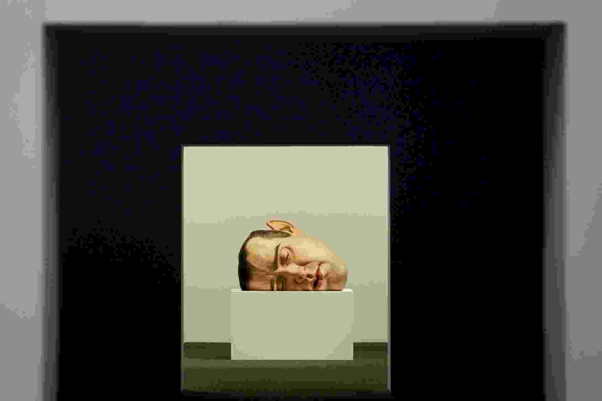 Obra da exposição de Ron Mueck na Pinacoteca de São Paulo - Flávio Florido/UOL