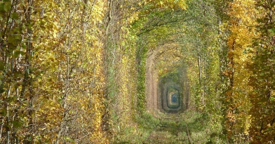 """O outono pode ser um período ideal para visitas ao """"túnel do amor"""", na Ucrânia"""