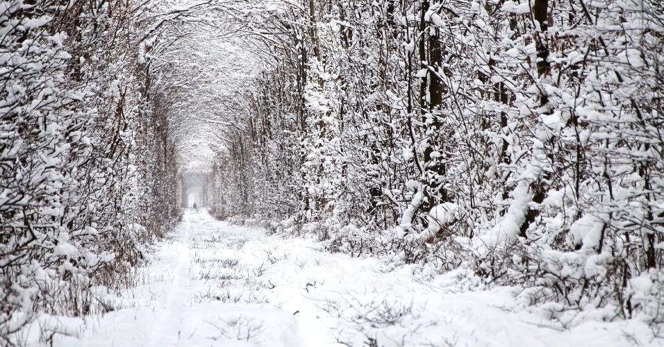 O túnel do amor é bonito até no gélido inverno ucraniano