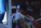 """Heloísa beija lhama e peões se despedem dos animais de """"A Fazenda 7"""" - Reprodução/Record"""