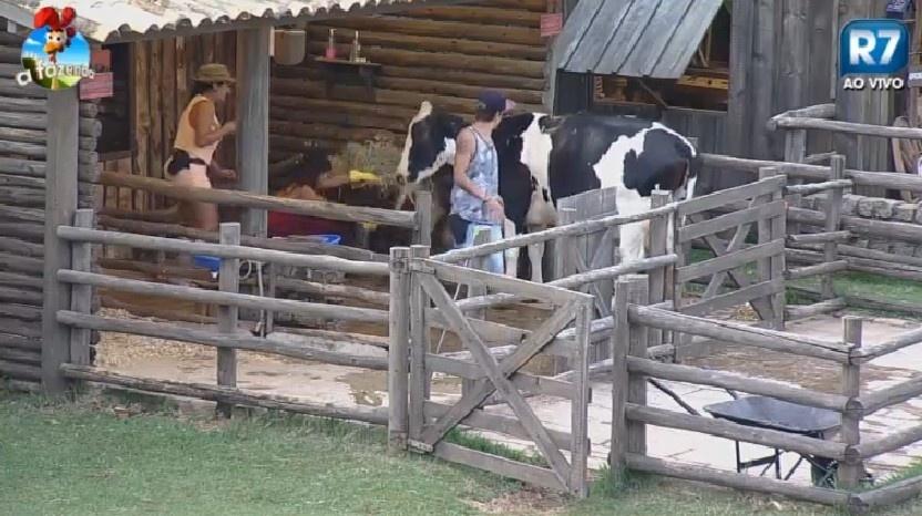 """Babi Rossi, DH Silveira e Heloísa Faissol cuidam de vaca e bezerro em """"A Fazenda 7"""""""