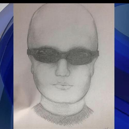 10.jan.2014 - A rede de televisão americana CBS postou em seu site o retrato falado de um criminoso que teria colocado uma bomba em um escritório no estado do Colorado, nos Estados Unidos, e Marcelo Tas se achou parecido