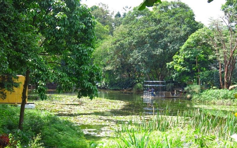 de Medellín, o Jardim Botânico é um dos principais espaços de