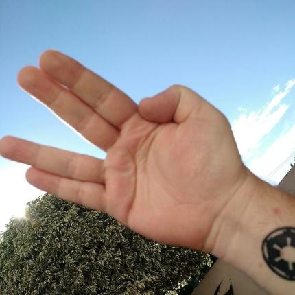 """Luciano Senise, de Sumaré (SP), manda seu recado: """"Lógico que sentiremos sua falta, Spock"""""""