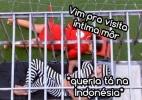 """Fernando na jaula e paredão amargo: Diva resume a 9ª semana do """"BBB15"""" - Reprodução/TV Globo/Montagem Diva Depressão"""