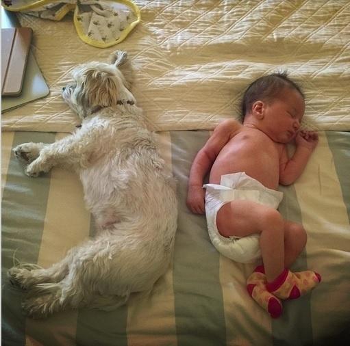 4.abr.2015 - A atriz Milla Jovovich mostrou aos seguidores do Instagram sua filha recém-nascida, Dashiel Edon, que nasceu nesta quarta-feira (1) em xxxx. O bebê é fruto de sua relação com o cineasta britânico Paul W.S. Anderson.