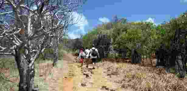 A trilha longa do Atalaia é conhecida também como Trilha Pontinha Pedra Alta - Eduardo Vessoni/UOL