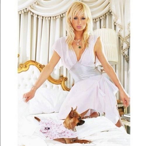 """22.abr.2015 - """"Descanse em paz, meu anjo"""", disse Paris Hilton em sua rede social, anunciando a morte de sua cachorrinha e parceira, Tinkerbell"""