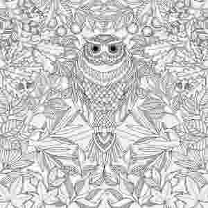 """Ilustração para colorir de """"Jardim Secreto"""", de Johanna Basford - Divulgação"""