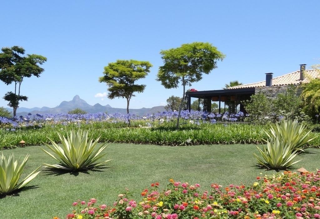 Fotos no rj jardim em plat s tem a suavidade das flores - Plantas para pleno sol ...