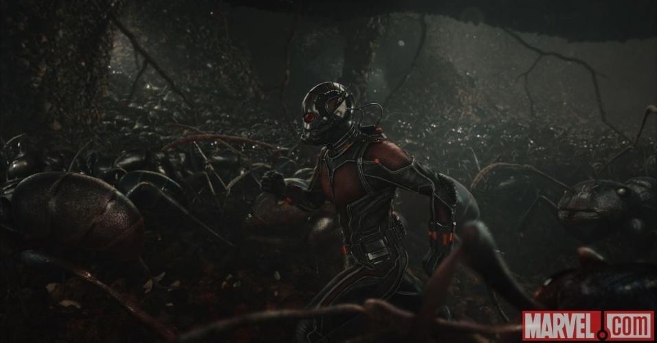 """O ator Paul Rudd em cena de """"Homem-Formiga"""""""