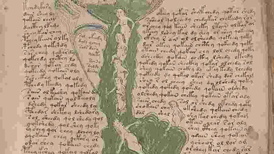 Imagem do Manuscrito Voynich - Reprodução