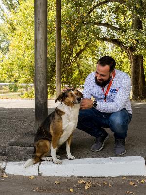Lucas e um dos cães que habitam Chernobyl - Reprodução/Airbnb