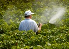 """Lei dos Agrotóxicos: entenda a polêmica da """"PL do Veneno"""" - iStock"""