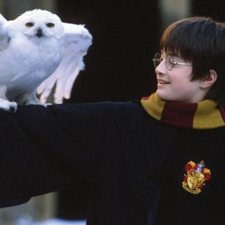 """Cena do filme """"Harry Potter e a Pedra Filosofal"""" (2001), de Chris Columbus - Reprodução"""