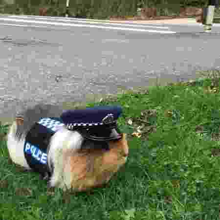 Constable Elliot tem até uniforme - Reprodução/Facebook - Reprodução/Facebook
