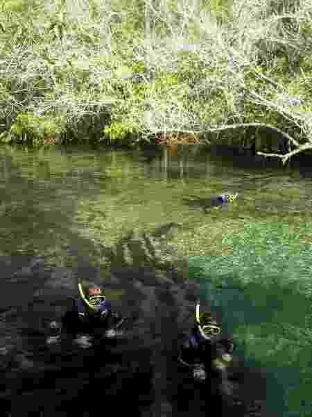 Flutuação no Rio Olho d'Água, uma das etapas da atividade no Rio da Prata, em Jardim - Eduardo Vessoni/UOL - Eduardo Vessoni/UOL
