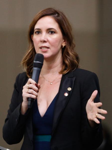 Daniela Lima de Andrade Borges, presidente da Comissão Nacional da Mulher Advogada da OAB  - Divulgação