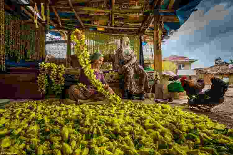 """""""Secagem de flores de quiabo em Tokat, Turquia. As mulheres colhem flores de quiabo do campo e as arrumam em uma corda, então as flores secas caem e o quiabo fica pronto para ser consumido no inverno."""" - F DILEK UYAR - F DILEK UYAR"""