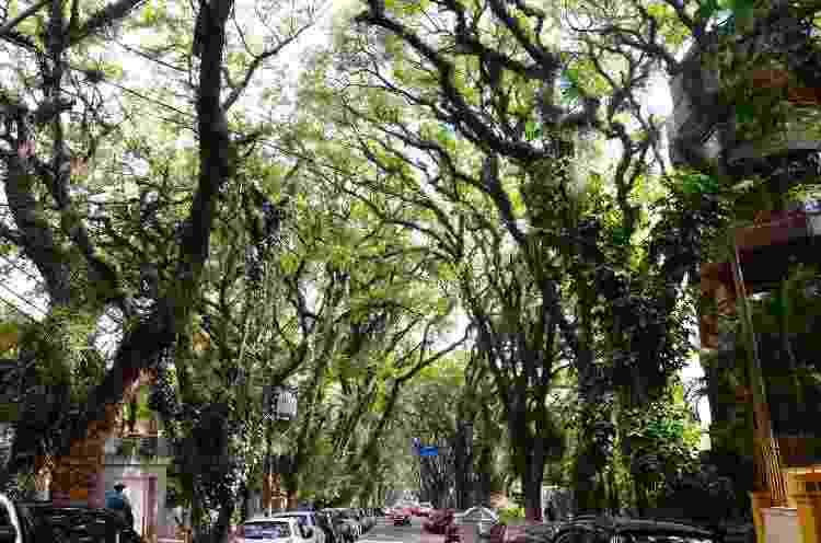 Rua Gonçalo de Carvalho, Porto Alegre - Getty Images - Getty Images