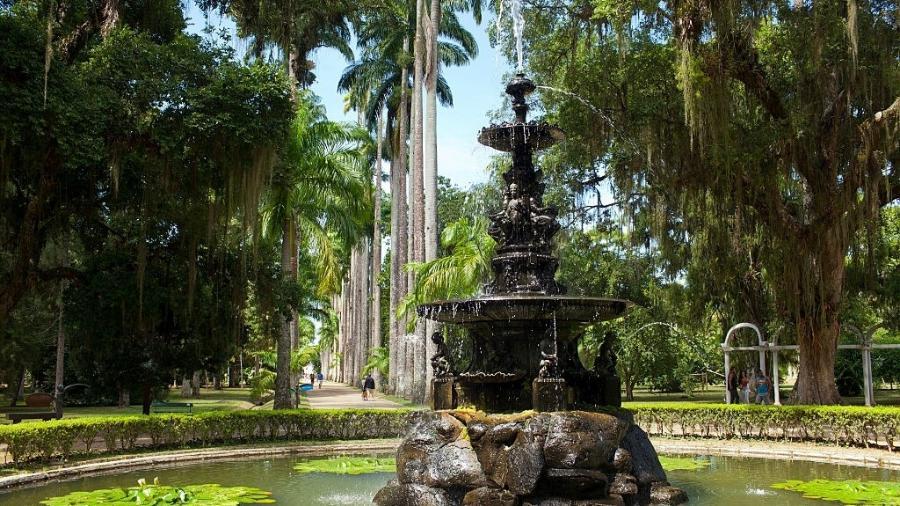 Jardim Botânico do Rio de Janeiro - Phil Clarke Hill/In Pictures via Getty Images