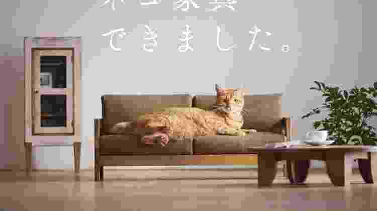 Sofá para gatos - Divulgação - Divulgação