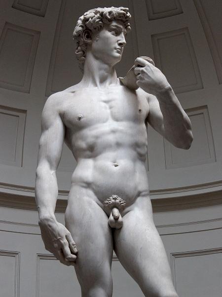 """""""David"""", de Michelangelo - Reprodução"""