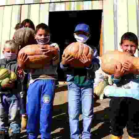 Quilombolas, caiçaras e pequenos agricultores ajudam periferias na pandemia - Wellington Lenon / MST-PR - Wellington Lenon / MST-PR